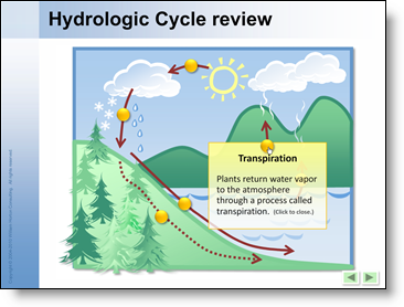Hydrologic Cycle review